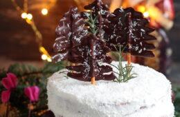 Christmas cake cacao e cocco